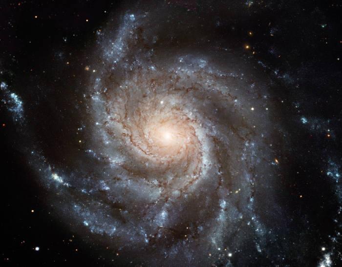 Portrét galaxie M101